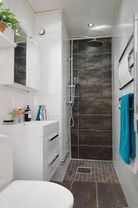 Bathroom Renovation Request