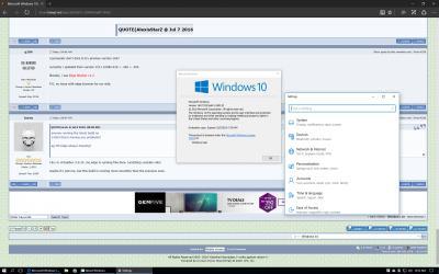 Microsoft Windows 10 (V 2)