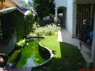 Good landscaping fish pond design for Koi pond design malaysia